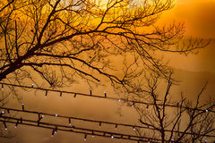 Sonnenuntergang auf Gipfeln im Nebel Stockfotos
