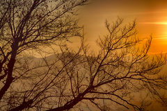 Sonnenuntergang auf Gipfeln im Nebel Stockfotografie