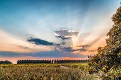 Sonnenuntergang auf grünem Ackerland in Italien Stockfotos
