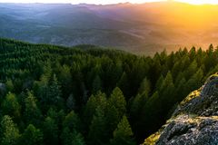 Sonnenuntergang auf Hügel-Bäumen stockfotos