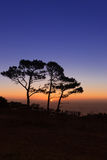 Sonnenuntergang auf Löwe-Kopf Stockfotografie