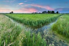 Sonnenuntergang auf niederländischem Ackerland Lizenzfreie Stockfotografie