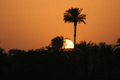 Sonnenuntergang auf Nil, Ägypten Stockbild