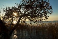 Sonnenuntergang auf See Garda, Italien stockfotos