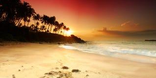 Sonnenuntergang auf Sri Lanka Lizenzfreie Stockfotografie