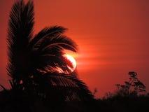 Sonnenuntergang auf Strand Lizenzfreie Stockfotografie