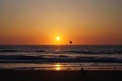Sonnenuntergang auf Texel Lizenzfreies Stockfoto
