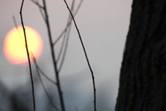 Sonnenuntergang auf Winterzeit Stockfotografie