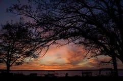 Sonnenuntergang-Bäume Lizenzfreies Stockfoto