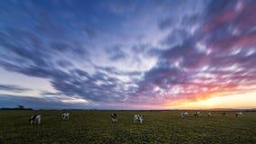 Sonnenuntergang am Bauernhof Lizenzfreies Stockbild
