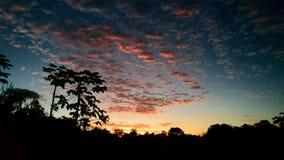 Sonnenuntergang am Bauernhof, Brasilien stockbilder