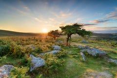 Sonnenuntergang bei Combestone auf Dartmoor Stockbilder