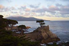 Sonnenuntergang bei einem 17-Meilen-Antrieb, Küstenmarkstein Stockfoto