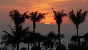 Sonnenuntergang beim Bali 4k des alten Mannes stock video