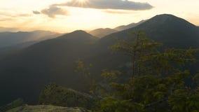 Sonnenuntergang, Berge, alpine Kiefer, Wind stock footage