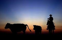 Sonnenuntergang-Cowboy lizenzfreie stockbilder