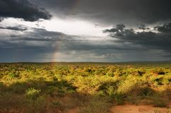Sonnenuntergang in der afrikanischen Savanne Lizenzfreie Stockbilder