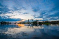Sonnenuntergang, der einen überschwemmten Dschungel in Laguna groß, in der Reserve Cuyabeno-wild lebender Tiere, Amazonas-Becken, stockbilder