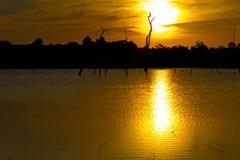 Sonnenuntergang in der Lagune Lizenzfreies Stockfoto