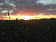 Sonnenuntergang an der Landseite Stockbild