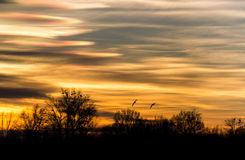 Sonnenuntergang in der Natur Lizenzfreies Stockfoto