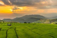 Sonnenuntergang an der Reisterrasse Verbot-PAs Bong Piang Lizenzfreies Stockbild