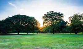 Sonnenuntergang in der Vachirabenjatas-Park-Fäule Fai Park Lizenzfreie Stockbilder