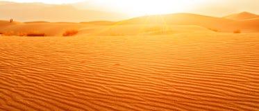 Sonnenuntergang in der Wüste Lizenzfreie Stockfotografie