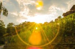 Sonnenuntergang in der Weinkellerei lizenzfreies stockbild