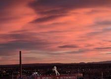 Sonnenuntergang der wilden Pferde Stockfotos