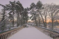 Sonnenuntergang des verschneiten Winters Lizenzfreie Stockfotos