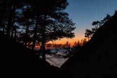 Sonnenuntergang durch den schwarzen Wald der Kiefer in den Bergen stockfoto