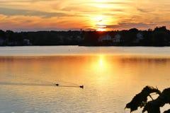 Sonnenuntergang durch den See Stockbilder