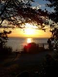 Sonnenuntergang durch die Bäume stockfotografie