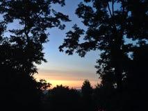 Sonnenuntergang durch die Blätter Stockbilder