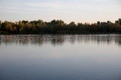 Sonnenuntergang in einem See Lizenzfreie Stockfotos