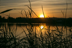 Sonnenuntergang in einem See Stockbilder