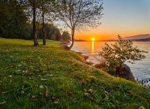 Sonnenuntergang entlang grasartigem Ufer Lizenzfreie Stockfotos
