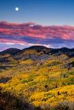 Sonnenuntergang-Ernte-Mond und Fall-Laub Stockfoto