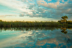 Sonnenuntergang am Everglades-Nationalpark lizenzfreie stockbilder