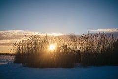 Sonnenuntergang am 14. Februar 2017 Lizenzfreie Stockfotografie