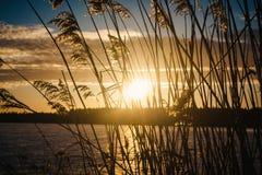 Sonnenuntergang am 14. Februar 2017 Lizenzfreies Stockfoto