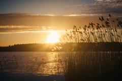 Sonnenuntergang am 14. Februar 2017 Lizenzfreie Stockfotos