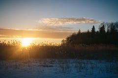 Sonnenuntergang am 14. Februar 2017 Lizenzfreies Stockbild