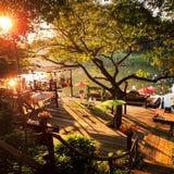 Sonnenuntergang am Fluss und am großen Baum stockfoto