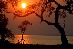 Sonnenuntergang am Flussufer. Lizenzfreies Stockbild