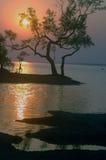 Sonnenuntergang am Flussufer. Lizenzfreies Stockfoto