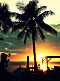 Sonnenuntergang in gesättigtem gelbem Abendhimmel und Purpur mit SchattenbildPalmen in Cala Estancia, Mallorca, Baleareninseln, S Lizenzfreie Stockfotos