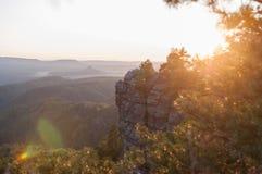 Sonnenuntergang hinter den Bäumen lizenzfreie stockfotos