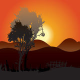 Sonnenuntergang-Hintergrund Stockfotografie